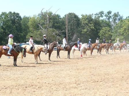 Picture of Horse Show